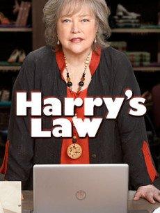 哈莉与法律/哈瑞与法律/鞋店事务所/律政俏师太